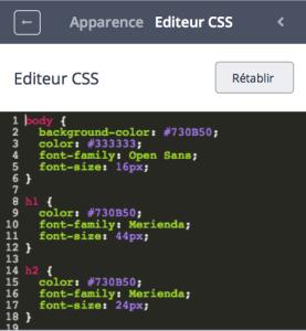Editeur CSS